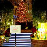 Christmas Tree of Minami Aoyama / 南青山のクリスマスツリー thumbnail