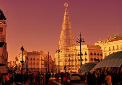 MADRID NAVIDAD 2013 -PUERTA DEL SOL 8537- (Jose Javier Martin Espartosa) Tags: madrid espaa spain puertadelsol mygearandme mygearandmepremium vision:sunset=0652 vision:clouds=091 vision:sky=0973 vision:dark=055 vision:outdoor=0884 madridnavidad2013