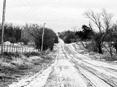 . (hornbeck) Tags: blackandwhite bw snow oklahoma bnw