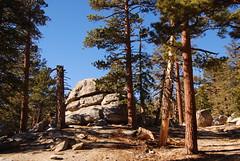 Willow Creek Trail 02 (ronkacmarcik) Tags: california park rock pine creek san state palmsprings mount trail willow willowcreek jacinto sanjacinto tokina12244 willowcreektrail