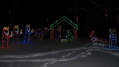 Nativity scene, in lights (Will S.) Tags: mypics frankfordtouristpark frankford ontario canada christmaslights nativitysceneinlights christmas xmas noel weihnacht