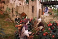 01054354 (BS-Foto) Tags: weihnachten bokeh iso400 samsung 20mm f28 augsburg krippe botanischergarten 20mmf28 nx200 botanischergartenaugsburg 20mmorless samsungnx samsungnx200 samsungnx20mm28 bsfoto samsungnx20mmf28