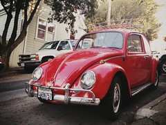 Bernal Beetle Beauty #bernalwood - Seen on Wool street in Bernal Heights (spieri_sf) Tags: bernalwood