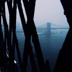 Find your frame. #VSCOcam #vscocamg3 #brooklynbridge #manhattanbridge #janus (adrianmojica) Tags: nyc newyorkcity blue snow newyork brooklyn square squareformat brooklynbridge manhattanbridge eastriver framing snowfall frameinaframe iphoneography instagramapp uploaded:by=instagram foursquare:venue=4a32c3f9f964a5208c9a1fe3