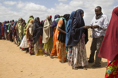 UNHCR News Story: UNHCR urges continued international protection for asylum-seekers from Somalia (UNHCR) Tags: africa camp news women kenya refugees staff help aid queue conflict somali humanrights asylum information protection firewood assistance unhcr somalia distribution visibility hornofafrica refugeecamps displaced displacement newsstory asylumseekers refugeecamp idp mogadishu internallydisplacedpeople displacedpersons dadaab displacedpeople internallydisplaced somalirefugees unrefugeeagency ifocamp unitednationsrefugeeagency alshabaab nonrefoulement acled insomalia theafricanunionmission