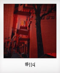 "#DailyPolaroid of 20-1-14 #114 • <a style=""font-size:0.8em;"" href=""http://www.flickr.com/photos/47939785@N05/12254829686/"" target=""_blank"">View on Flickr</a>"