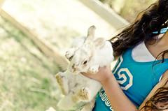 ¡Mira un conejito! (Vampyyri.Lauri) Tags: chile laura animal del mar nikon expo viña conejo animales nikkor sporting cabra mascotas vaca granja espacio viñadelmar vaquilla tudela conejitos expomascotas nikonista espaciosporting lauratudela