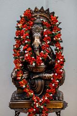 Sankranthi2014_TSN_127 (TSNPIX) Tags: art cooking drawing folkdance tsn contests bhogipallu muggulu sankranthi2014 gobbemmadance