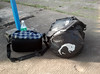 Luggage (Peeping Thom) Tags: beach bag kerala varkala luggage tatonka eastpak