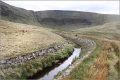 (Capt' Gorgeous) Tags: wild lake mountains water grass wales walk country breconbeacons streams blackmountain llynyfanfawr