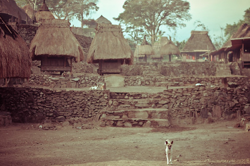 Bena's Traditional House