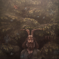 The Pan Within (Beata Zakrzewska (Sqwo)) Tags: blue trees wild music man green nature fauna fairytale forest canon butterfly dark squirrel god branches magic fineart pipe story owl pan conceptual mythology sqwo