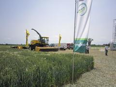 Syngenta in campo BigEvent Cereal Plus Arqua Polesine 9241 (Image Line) Tags: agricoltura cereali syngenta syngentaincampo2014 cerealplus