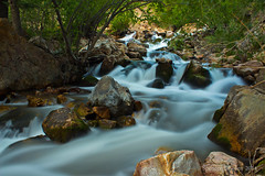 Rapids and Cascades (Spencer Bawden Photography) Tags: longexposure plants usa mountain nature water colors grass pine america creek river landscape flow outdoors utah big flora rocks stream slow little background straw pebbles canyon h2o watershed cottonwood rockymountains brook spencer rapid vegitation foreground ecosystem shutterspeed bawden spazoto spencerbawden