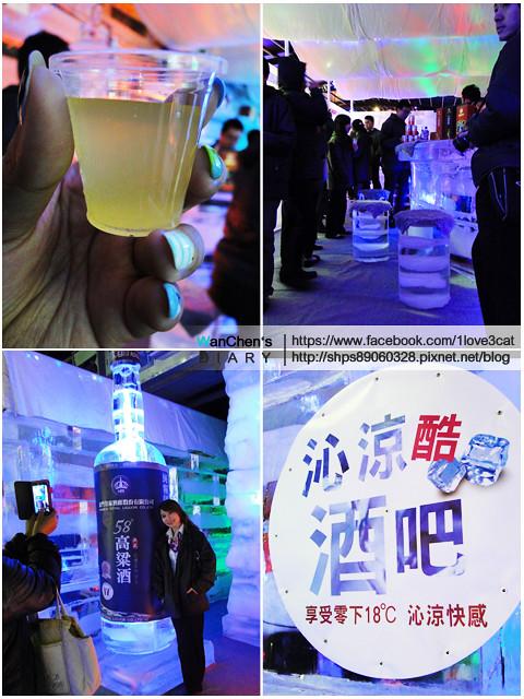DSC 2014急凍樂園06546