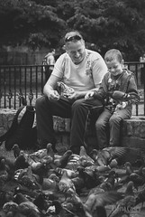 365 189 pigeon (1nceMore) Tags: ireland boy 50mm child pigeon 365