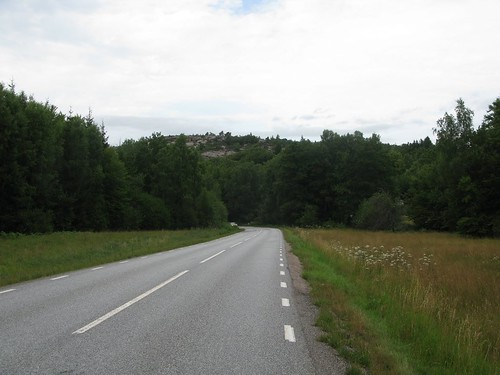 Gunnemyr along the road between Runden and Brygge 2013