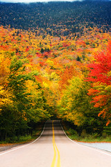 Smuggler's Notch (Robert Allan Clifford) Tags: october smugglersnotch stowe vt vermont art autumn color drive fall foliage leisure notch photo photograph resort road roadtrip rural scenic skiing tour tourism travel trees vacation