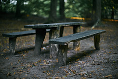 Bench bubbled in bokeh (Budoka Photography) Tags: bokeh canonfd50mmlf12 canonllens forest autumn september outdoor nature nationalpark skralid sweden colorsofautumn manual