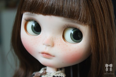 Velvet (little dolls room) Tags: blythe blythedoll blythecustomdoll bigeyesdoll ooakdoll ooakcustomblythedoll velvetminuet sbl doll dollfaceup littledollsroom littledollroombaby