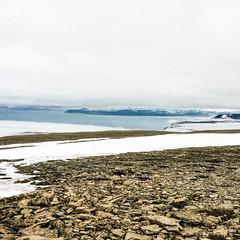 Cold winter view (danielfoster437) Tags: arktis eis kälte wintereis arctic coldweather dewinter ice koude noordpool svalbard winter wintercold winterijs berlin germany de
