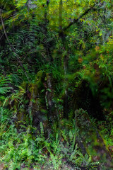 DSCF7208 (kingston Tam) Tags: waterfall river rapids sedimentaryrock stone ancientcity guizhou wetlandpark park canyon landscape naturallandscape mountain scenery streetscape oldfashioned streetphotography castle hawkers peddler fujifilmxt1