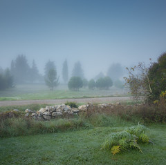 7.11.16 103 (Jeaunse23) Tags: mist fog france ardeche autumn gr ricohgrd grd