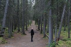 IMG_9449 (ctmarie3) Tags: banffnationalpark lakeminnewanka stewartcanyon trail