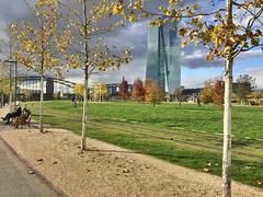 Frankfurt Herbst EZB (Boris-Strasbourg) Tags: herbst magix foto manager 16 deluxe frankfurt main deutschland germany francfort allemagne banque centrale européenne ezb ecb bce