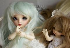 Lucia and Emilia (~Akara~) Tags: bjd ball jointed doll fairyland fairy land fl pukipuki puki madeleine custom faceup face up pukifee fee pkf juri 2014 event faceplate
