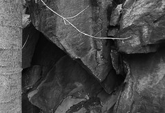 rocks (tcd123usa) Tags: leicadlux4 alapocaspark wilmingtondelaware nature autumn autumn2016 naturestextures
