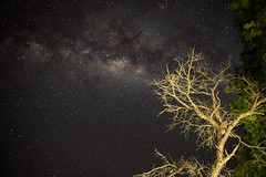 The milky way (David Pellicola) Tags: southafrica sud africa sudafrica nikon nikond810 d810
