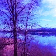 Big Bear Winter Lake (Art4TheGlryOfGod) Tags: bigbear bigbearlake winter winterscene digitalpainting digitalpaint digitalpainteffect art4theglryofgod artforthegloryofgod art artistic art4thegloryofgod catholic christian snow iphone bigbearmountain california