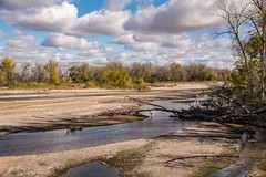 South Branch of the Platte . . . (Dr. Farnsworth) Tags: riverbed river southplatte platte nebraska shallow water dry trees oregontrail rmnp nb fall october2016