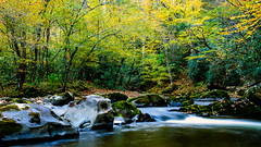 Little River - Great Smokey Mtn. NP (ArmyJacket) Tags: greatsmokeymountainnationalpark gsmnp tennessee blueridge appalachian mountains cadescove outdoor park landscape natural