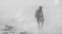Snowstorm (Christos Kapnisis Ace) Tags: snowstorm greece parnitha snow blackandwhite
