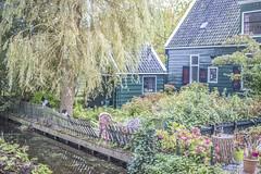 IMG_9596 (digitalarch) Tags: netherlands zaanse schans zaanseschans
