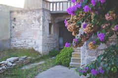 Dream Trips Vela Luka, October 2014 (Anela epanovi) Tags: dream trips vela luka travel tourism you sholud be here