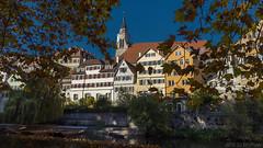 View to Tübingen (KF-Photo) Tags: neckar neckarfront platanenallee stiftskirche tübingen 169 boote neckarufer herbstblattumrahmung