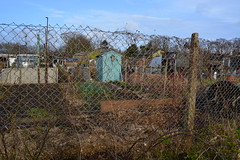 Fenced Allotment (gwenbrewer) Tags: meadows grass wildlife trees hedges winter london chiswick nature sky blue