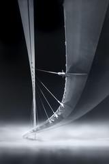THE BRIDGE (Titanium007) Tags: bridge vertical blackandwhite monochromatic tensionwires cables suspendedbridge footbridge