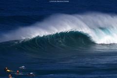 IMG_2768 copy (Aaron Lynton) Tags: peahi lyntonproductions canon 7d maui hawaii xll xxl bigwave big wave wsl surf surfig surfing jaws peahichallenge