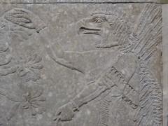Eagle-Headed Genie (Aidan McRae Thomson) Tags: nimrud relief sculpture ancient assyrian mesopotamia britishmuseum london