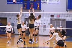 IMG_8100 (SJH Foto) Tags: girls volleyball high school york delone catholic team teen teenager net battle spike block action shot jump midair
