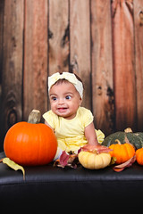 Malaak 5 months (Mido Melebari) Tags: malice baby girl babygirl kid kids arab birthday birth day fall season 2016 smile happy 5d canon pumpkin studio father family photo picture