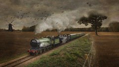 Double Header (brian_stoddart) Tags: trains transport tree windmill railways steam vintage