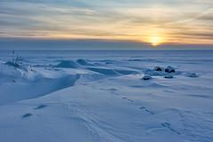 Tauvo (mikkovares) Tags: siikajoki merenranta lumi j ilta auringonlasku pakkanen jniksenjlki tauvo kinos merenj iltaaurinko maisema
