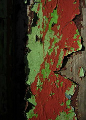 Higher Botallack (leavesandpuddles) Tags: abandoned deadwood derelict decaying decay dereliction macro higherbotallack carnyorth peelingpaint penwith stjust red green weathered texture