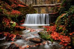 Hidden heaven! (acipinarli) Tags: autumn trees leaves landscape forest stones fall foliage season falls cascade stream moss ivy waterfall arifunsal red
