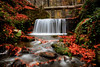Hidden heaven! (acipinarli) Tags: autumn trees leaves landscape forest stones fall foliage season falls cascade stream moss ivy waterfall arifunsal red
